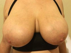 A pair of huge natural mature tits