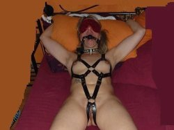 MILF slave gets blindfolded, gagged, and tied