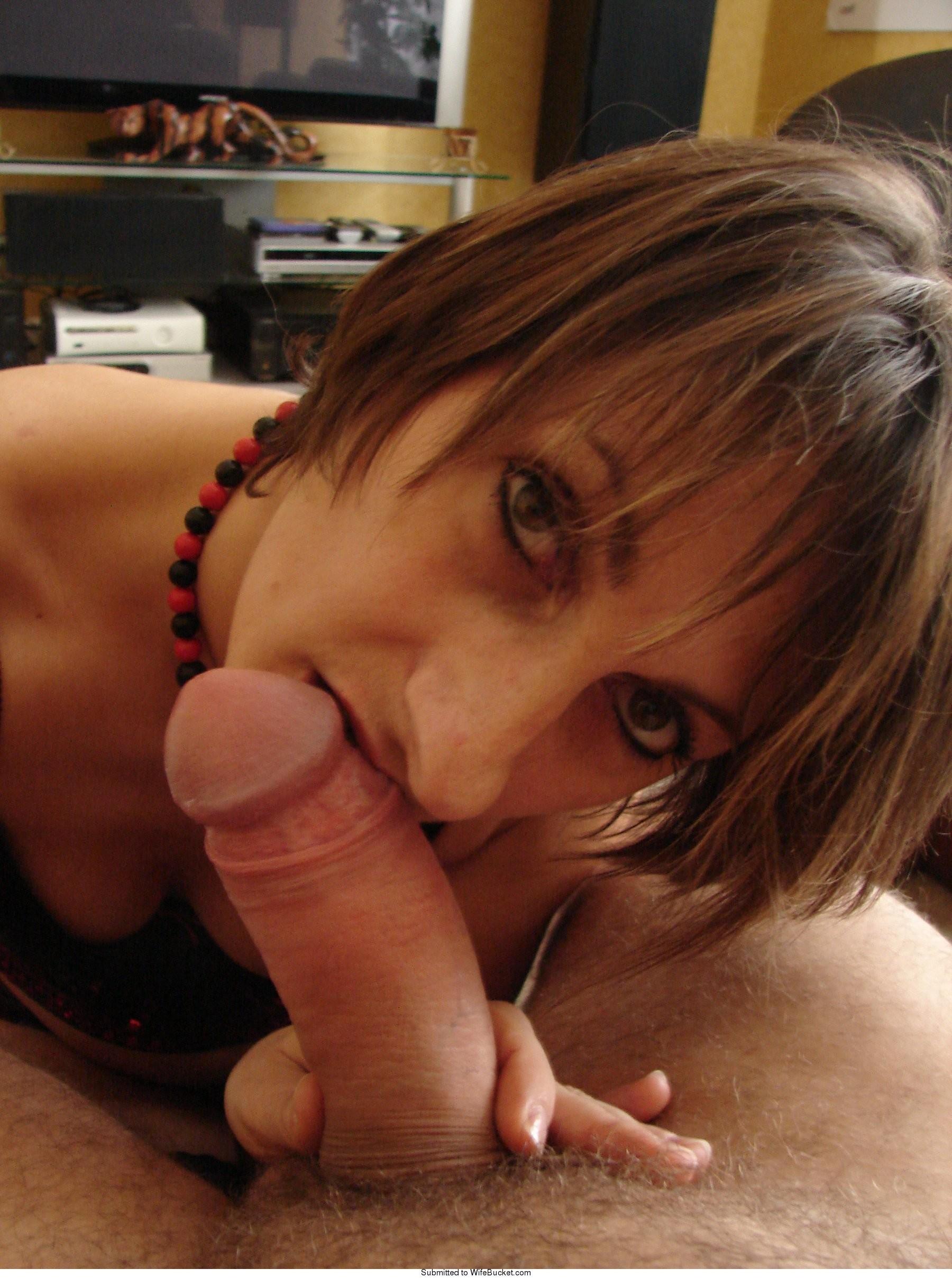 Amateur wife blow jobs